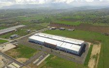 Barberini_new plant